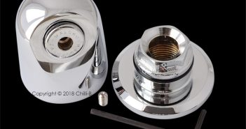 Vandal resistant shower head with wall plate for prisons